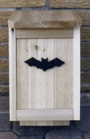 Bat box. png