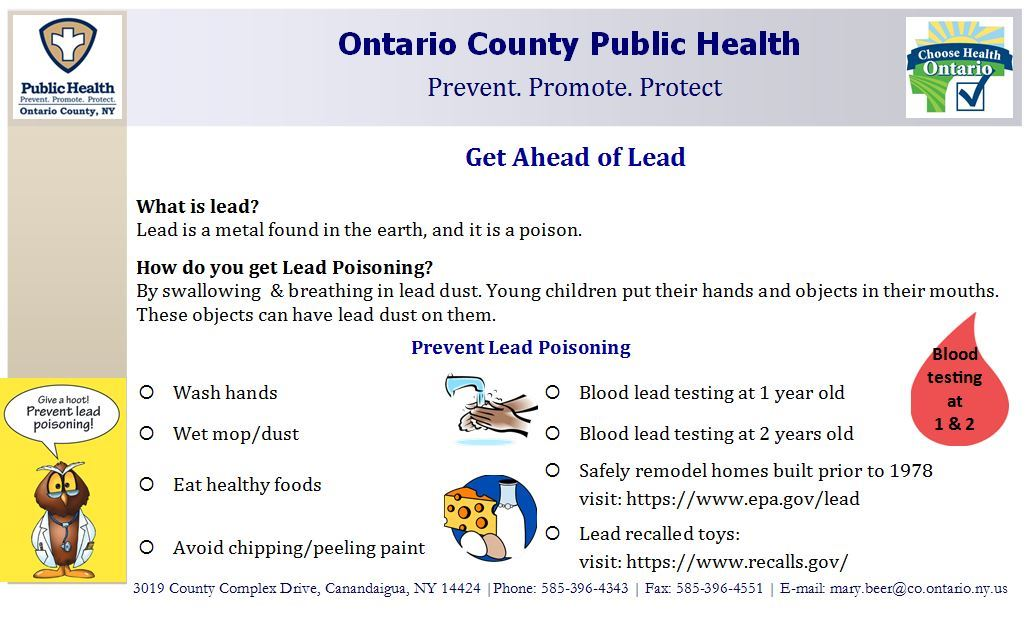 Lead Poisoning Prevention 2017 Graphic