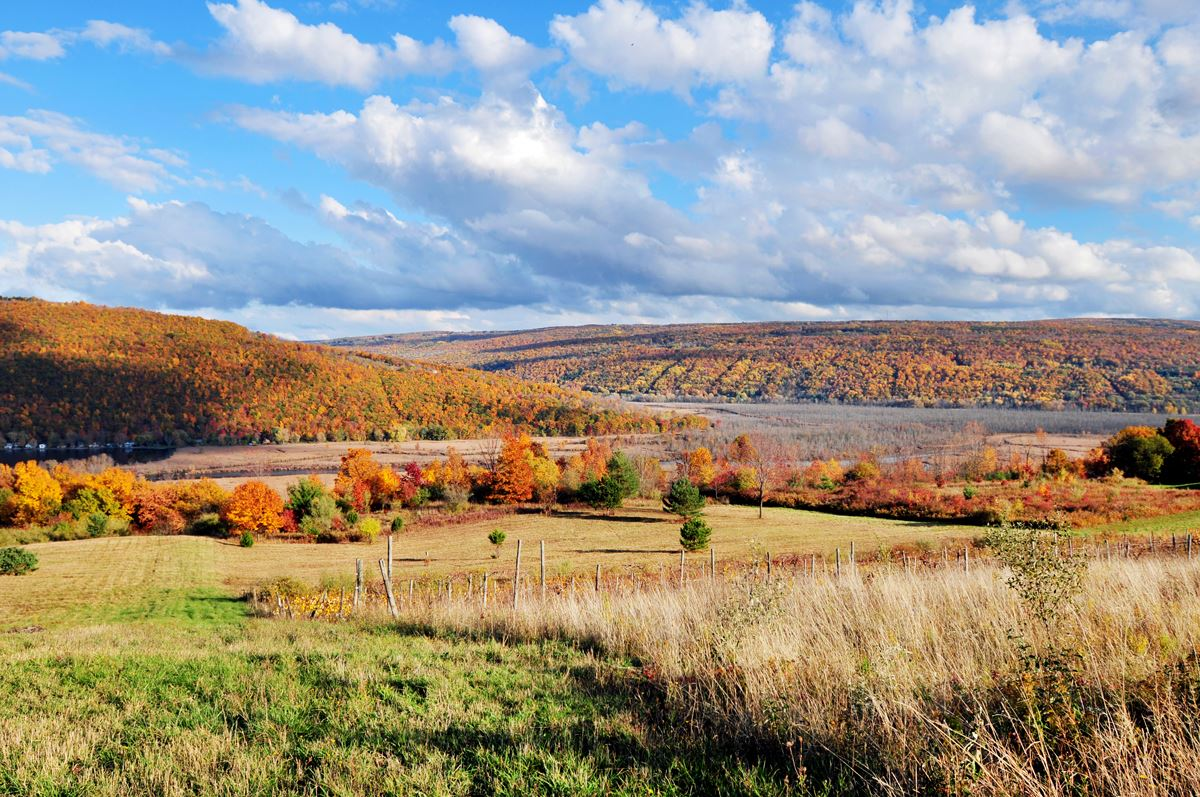 Ontario County - Fall Foliage, West River