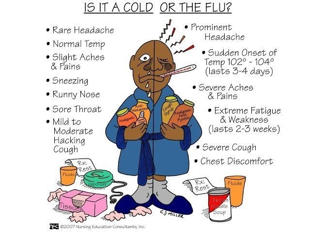 cold vs flu web.jpg