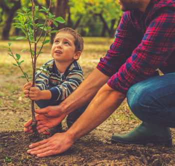 child and adult planting a tree
