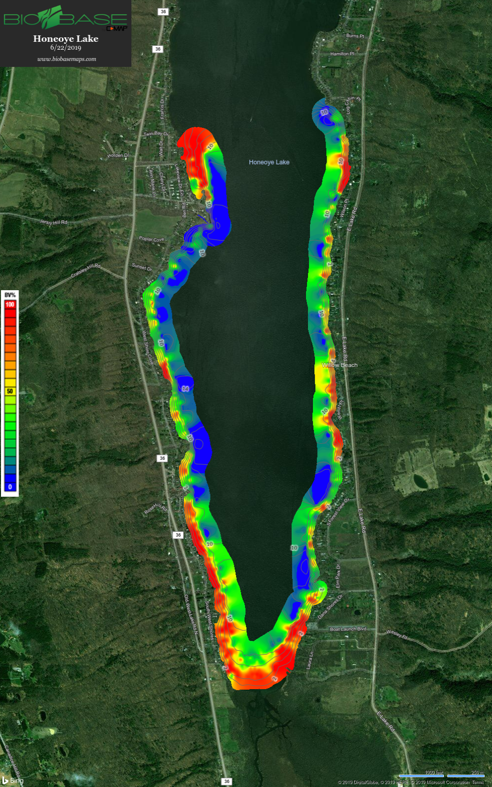 Honeoye Lake Southern Lake Basin Macrophyte Map 062119